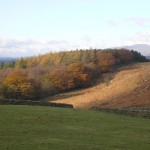 Autumn colours near Settle with Ingleborough in the background